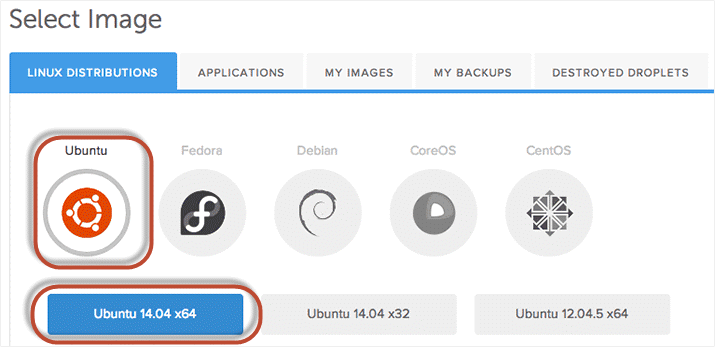 sistem operasi vps hosting