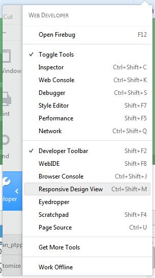 Menu Developer View pada Firefox