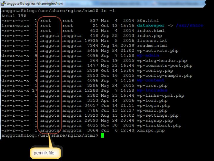 daftar-file-wordpress-di-nginx